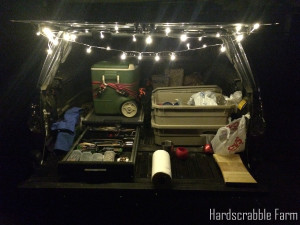 Camping with a cooler and Christmas lights.